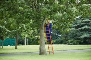 Calling Tree by Rosemary Lee and Simon Whitehead. Performer Ben Stammers. Photo Oliver Rudkin jpg